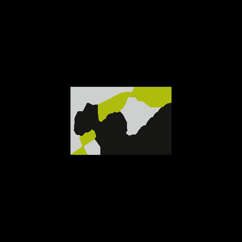 Media Concept Logo