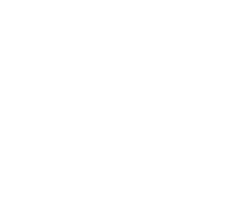Das alte Logo der EMS Schiers vor dem Rebranding.